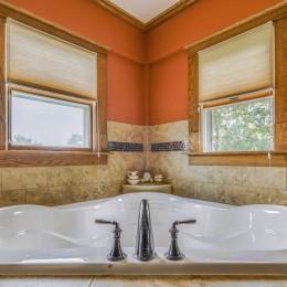 MTI corner tub/bath with a Kohler Devonshire faucet.